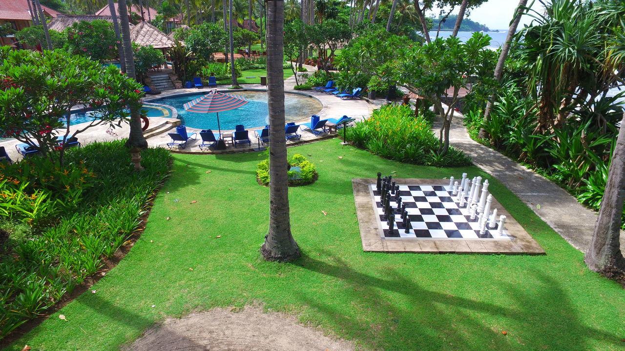 Chess H P Senggig Tropical Climate