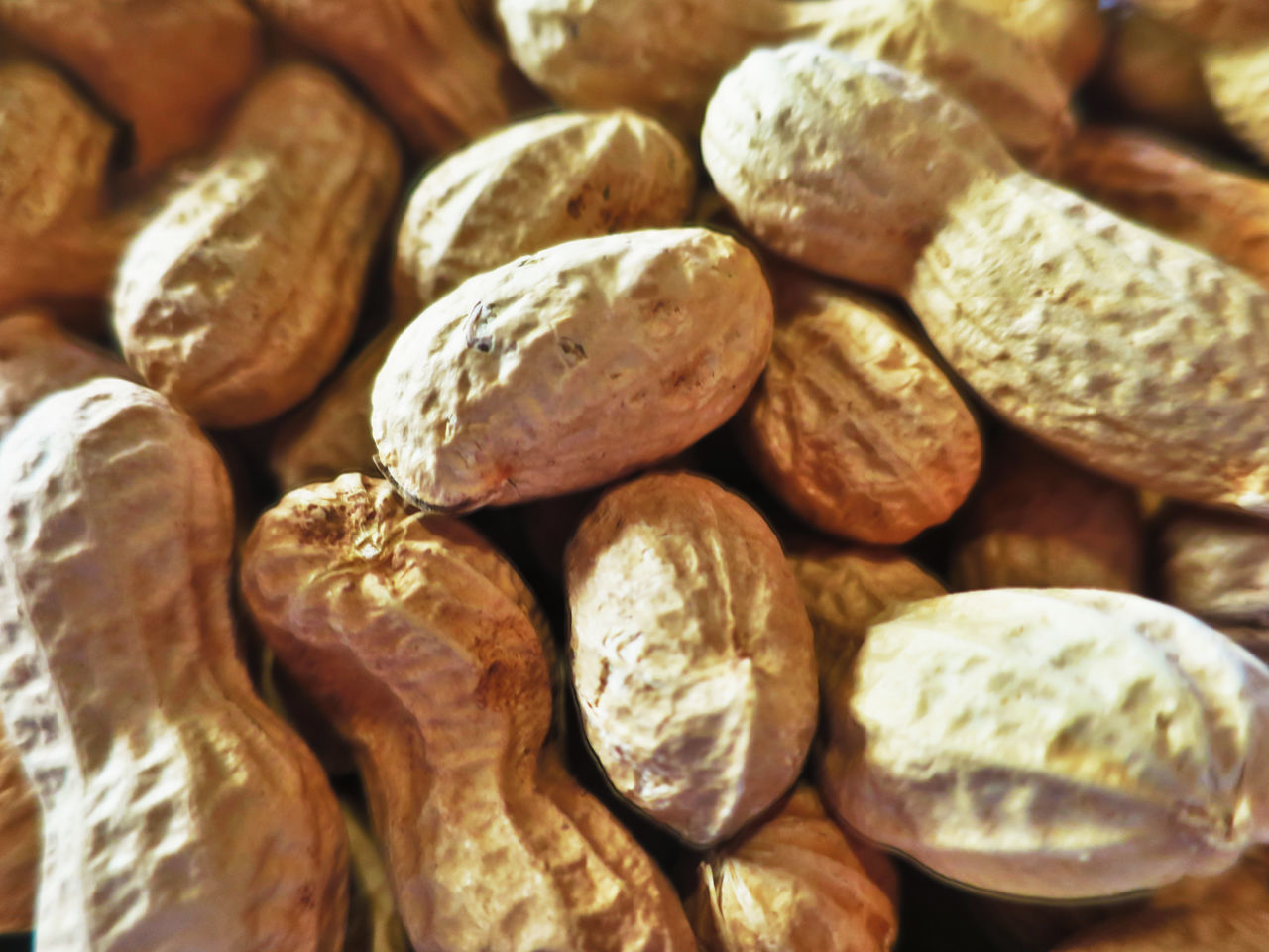 Dried peanuts peanuts Backgrounds Close-up Day Food Food And Drink Full Frame Healthy Eating Indoors  Large Group Of Objects No People Peanuts, Peanut, Peanuts, Dried, Dried Fruit, Close-up, Eating, Aperitif, Meal, Restaurant, Cultivation