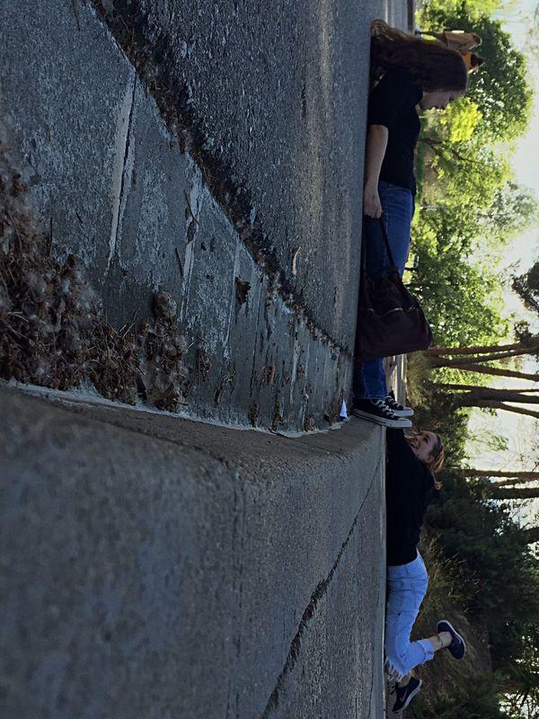 Taking Photos Everyday_UAB PublicitatUAB2016 Relaxing