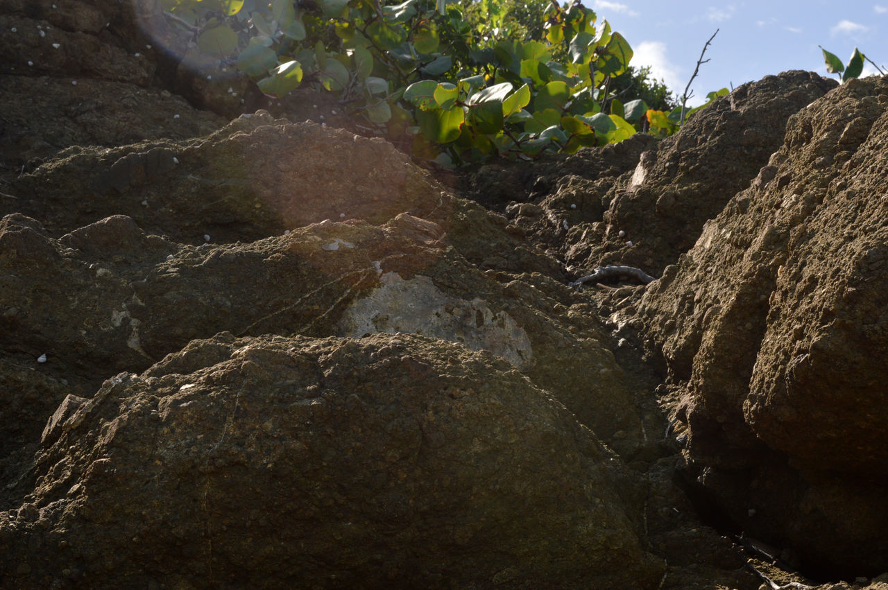 rock - object, day, no people, outdoors, low angle view, nature, beauty in nature, mountain, close-up, freshness, sky