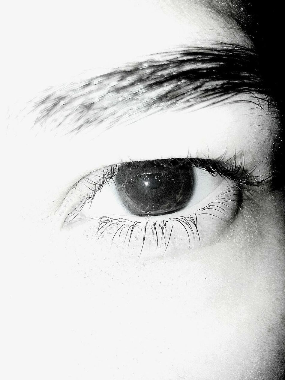Black & White Angry Eye Closeupshot