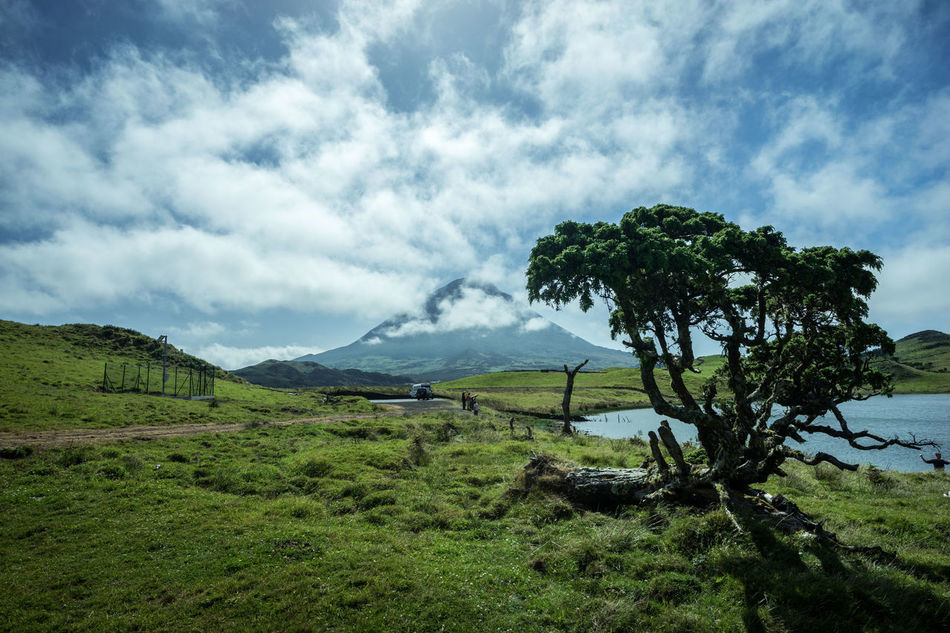 Mount Pico, Azores Azores Beauty In Nature Cloud - Sky Field Green Color Landscape Mount Pico Mountain Nature Outdoors Pico Sky Tranquil Scene Tranquility Tree Water Finding New Frontiers Miles Away