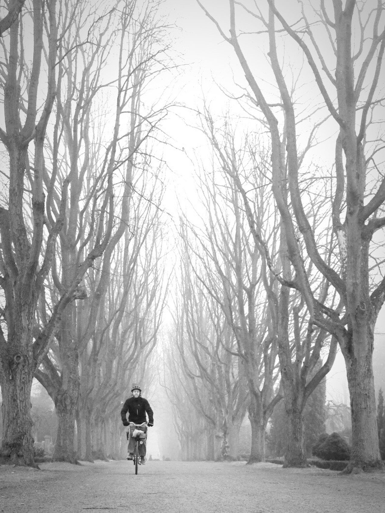 Winter One Person Nature Shootermag Monochrome Bw_collection Black And White Fog Street Photography Outdoors