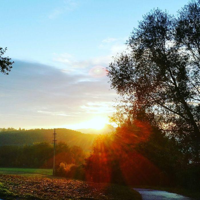 Sun Newday Oktober2015 Wunderschön