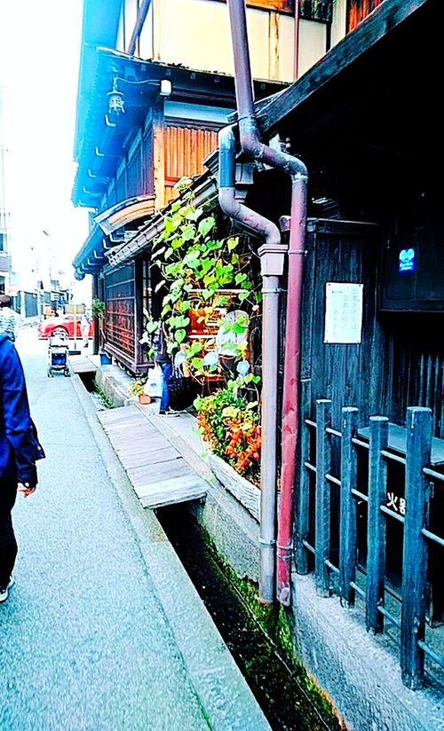 Japanese Old Town in Takayama Japan Takayama Old Town Asagao