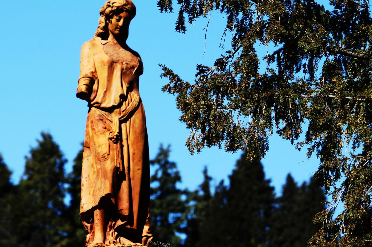 Ameno Town Art And Craft Day Human Representation Italy March 2017 Nature No People Outdoors Piemonte Sculpture Sky Statue Tree