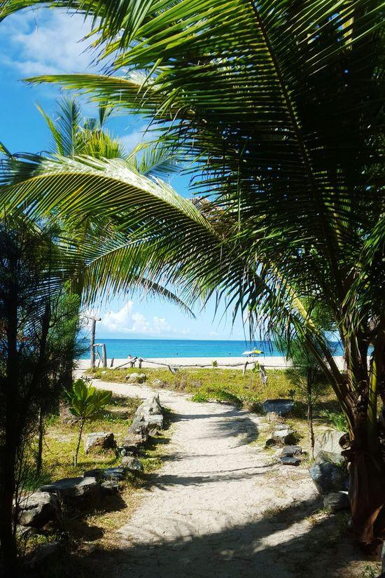 Endless summer, take me there. Vitaminsea Beachbaby MermaidLife Mermaidforlife Ocean View Pacific Ocean Nature Summer Foreversummer