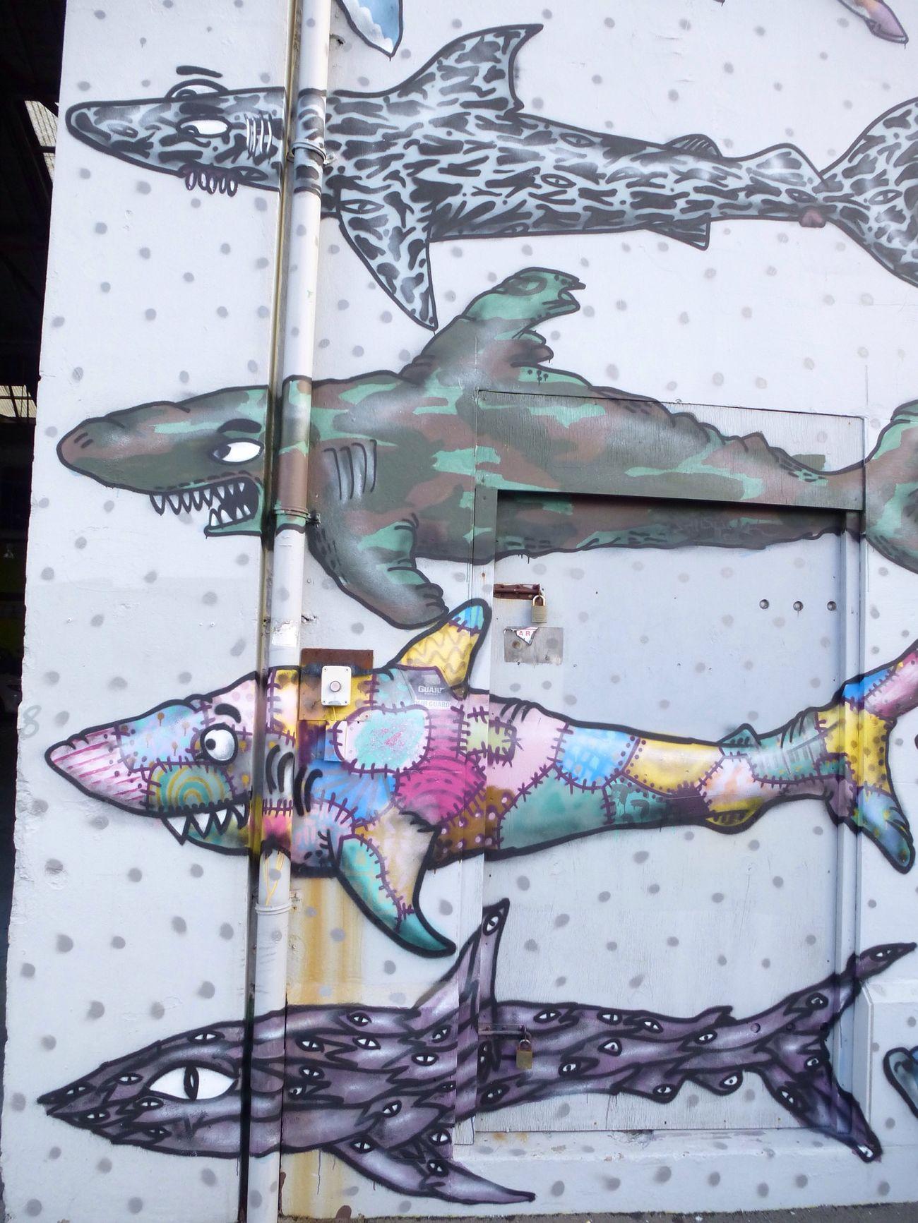 Shark Protest Wellington  Newzealand Wanderlust Ontheroad Savesharks Travel City