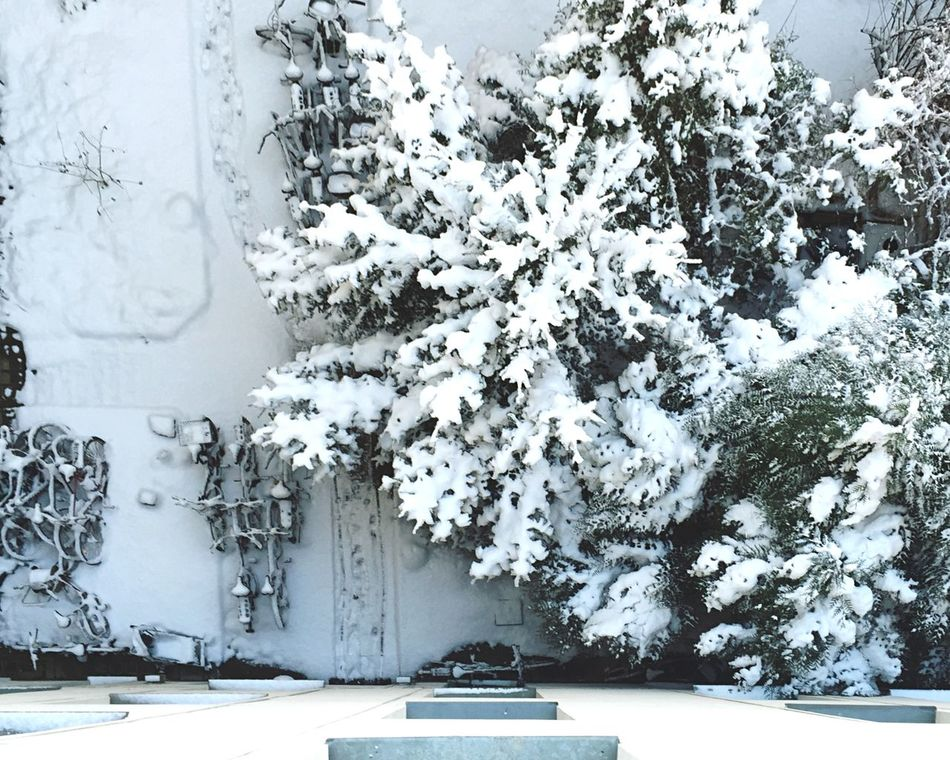 Beautiful stock photos of snow, Berlin, Cold Temperature, Day, Frozen