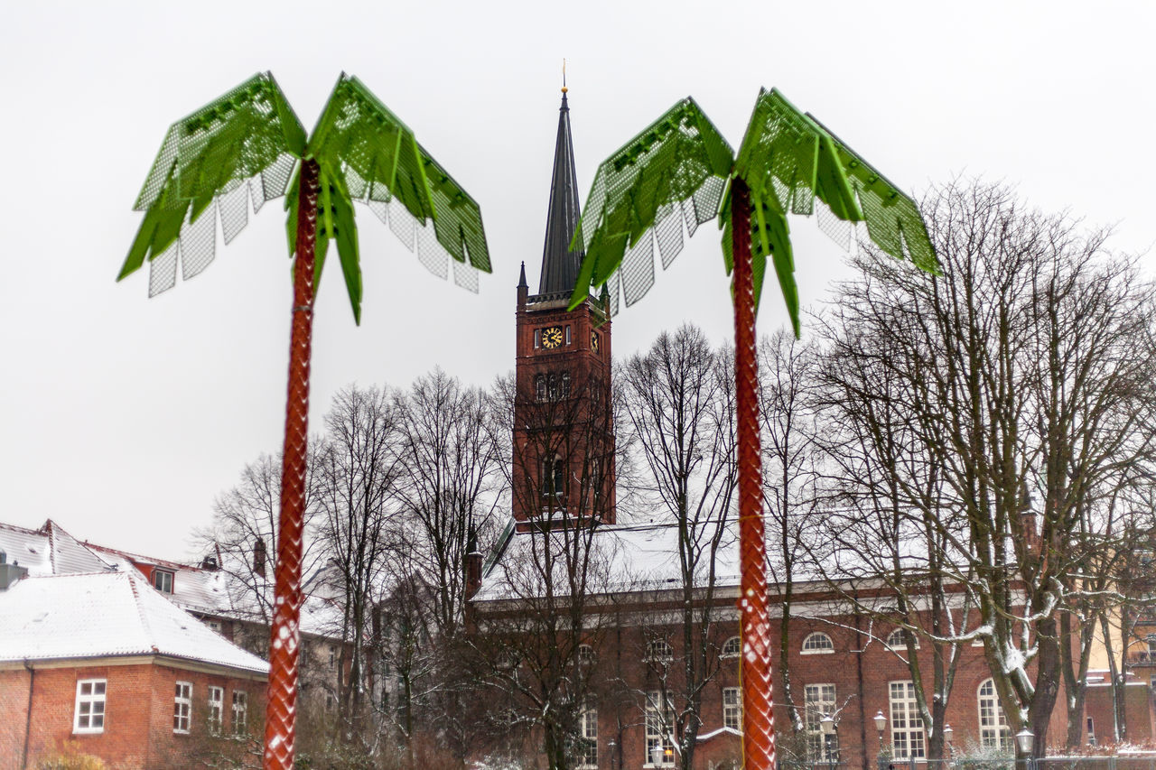 Adapted to the City Architecture building exterior City day Nature outdoors Palm tree Tree Fresh on Eyeem Hamburg Church tower Altona