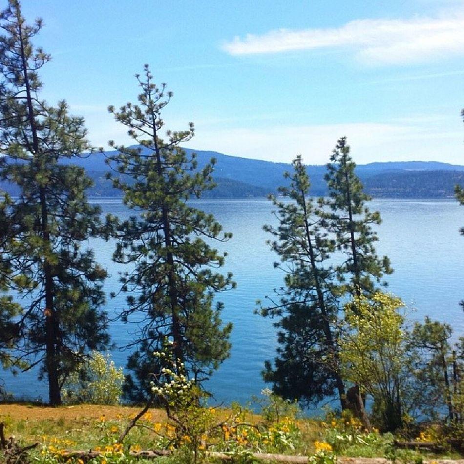 Last Run on TubbsHill Lake Coeurdalene next run in Eugene Sunny and warm 1picaday