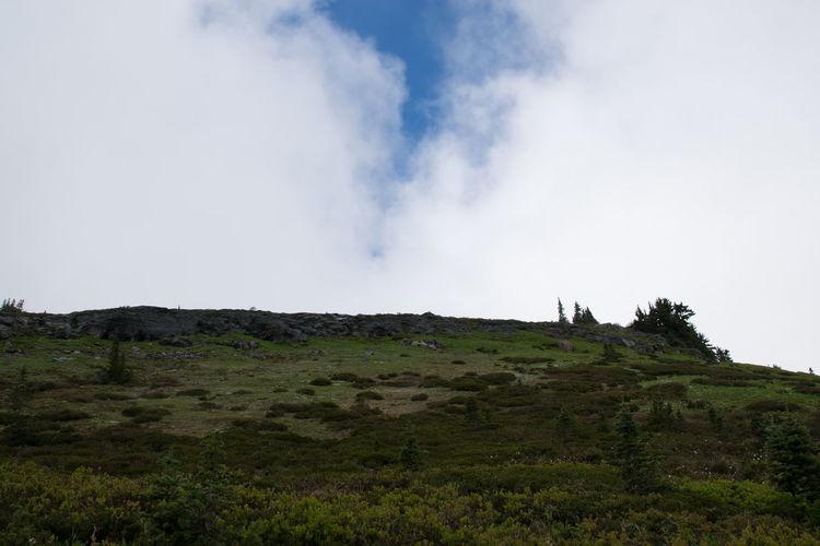 Blue Sky Blue Sky And Clouds Mount Rainier Nature Patch Of Blue Sky Summer Views Washington State