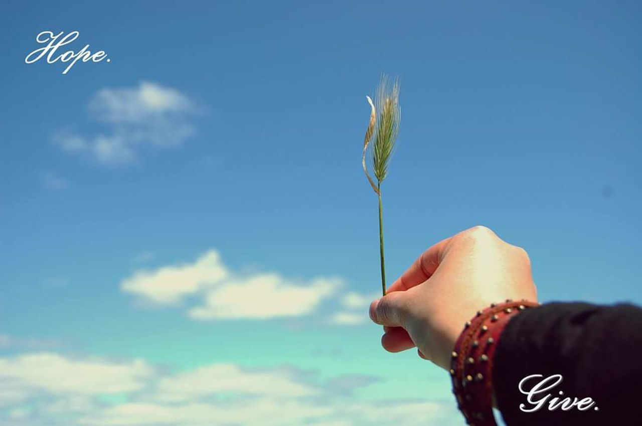 human hand, human body part, one person, real people, sky, human finger, cloud - sky, blue, holding, outdoors, day, childhood, lifestyles, nature, close-up, beauty in nature, people