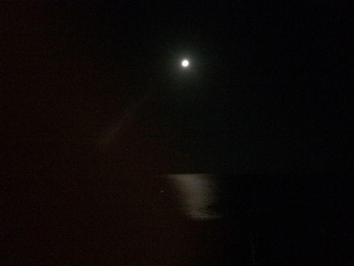 Moon Night Okinawa Moon Night Okinawa