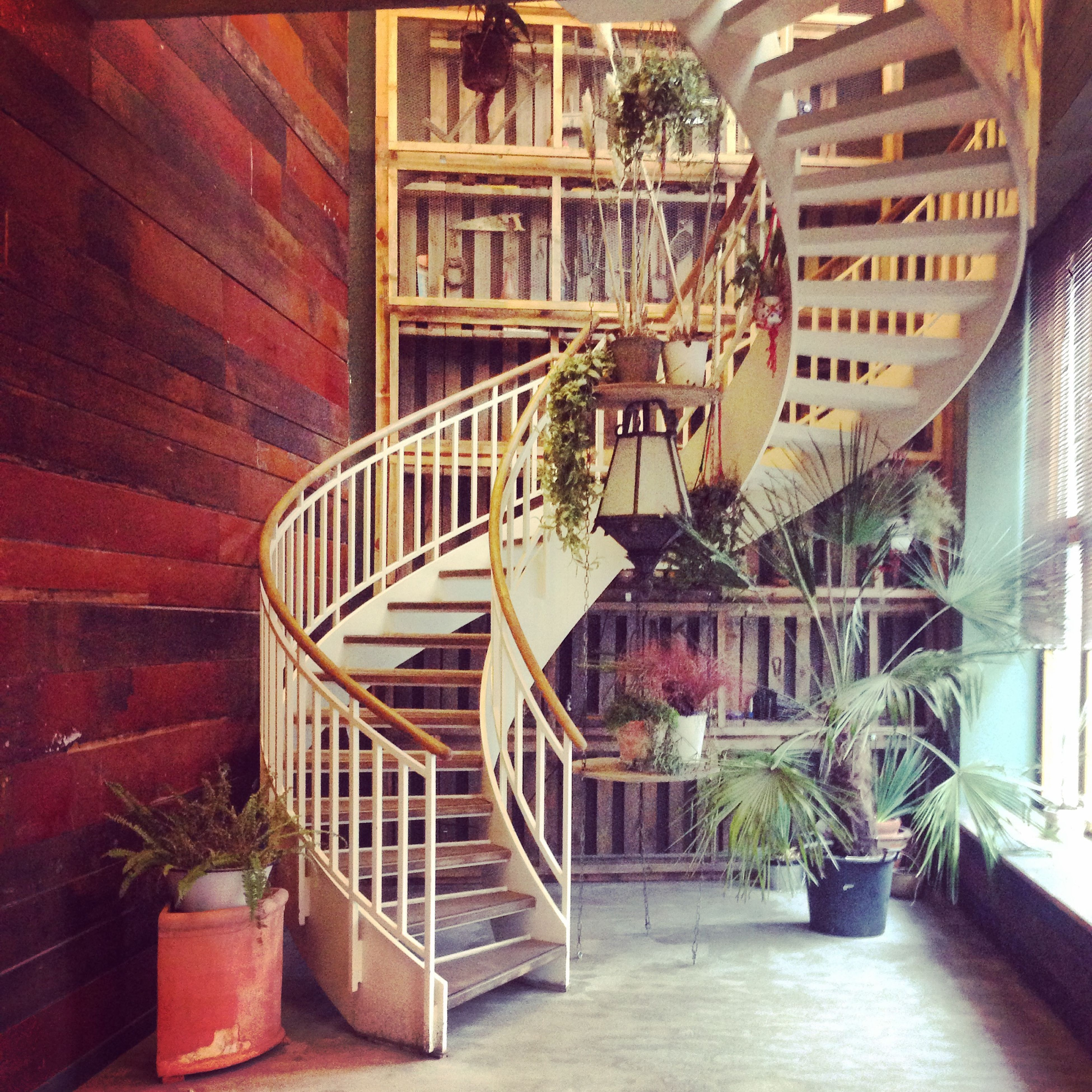 architecture, built structure, building exterior, potted plant, steps, railing, house, steps and staircases, staircase, residential structure, chair, residential building, plant, building, indoors, absence, window, day, no people, entrance