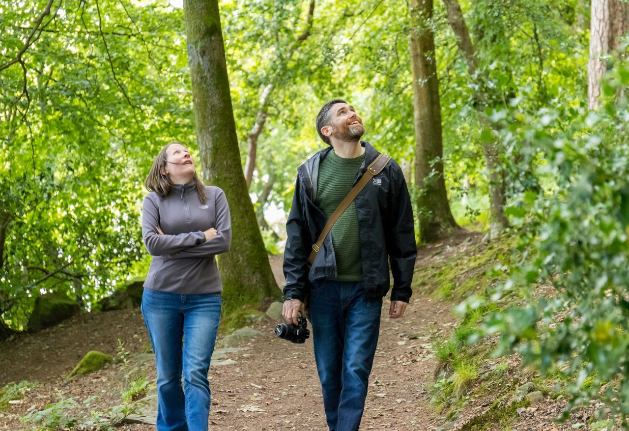heterosexual couple, two people, walking, casual clothing, togetherness, men, tree, forest, day, adults only, hiking, outdoors, front view, full length, nature, holding, people, adult, women, mature adult, husband, leisure activity, couple - relationship, standing, mature couple, young adult, community outreach, volunteer