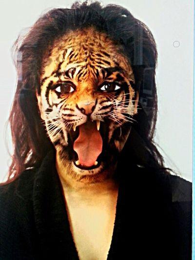 Tiger Photoshop #illustration #drawing #artwork #photoshop #digitalillustration #collageartist #collagecollective #gallery #visualart #photoshopcs6 #photoshopcs5 #photoshopcs3 #photoshoptouch #photoshopcc #photoshopedit #photoshopelements Photoshopmaster Photos Animals Alevels