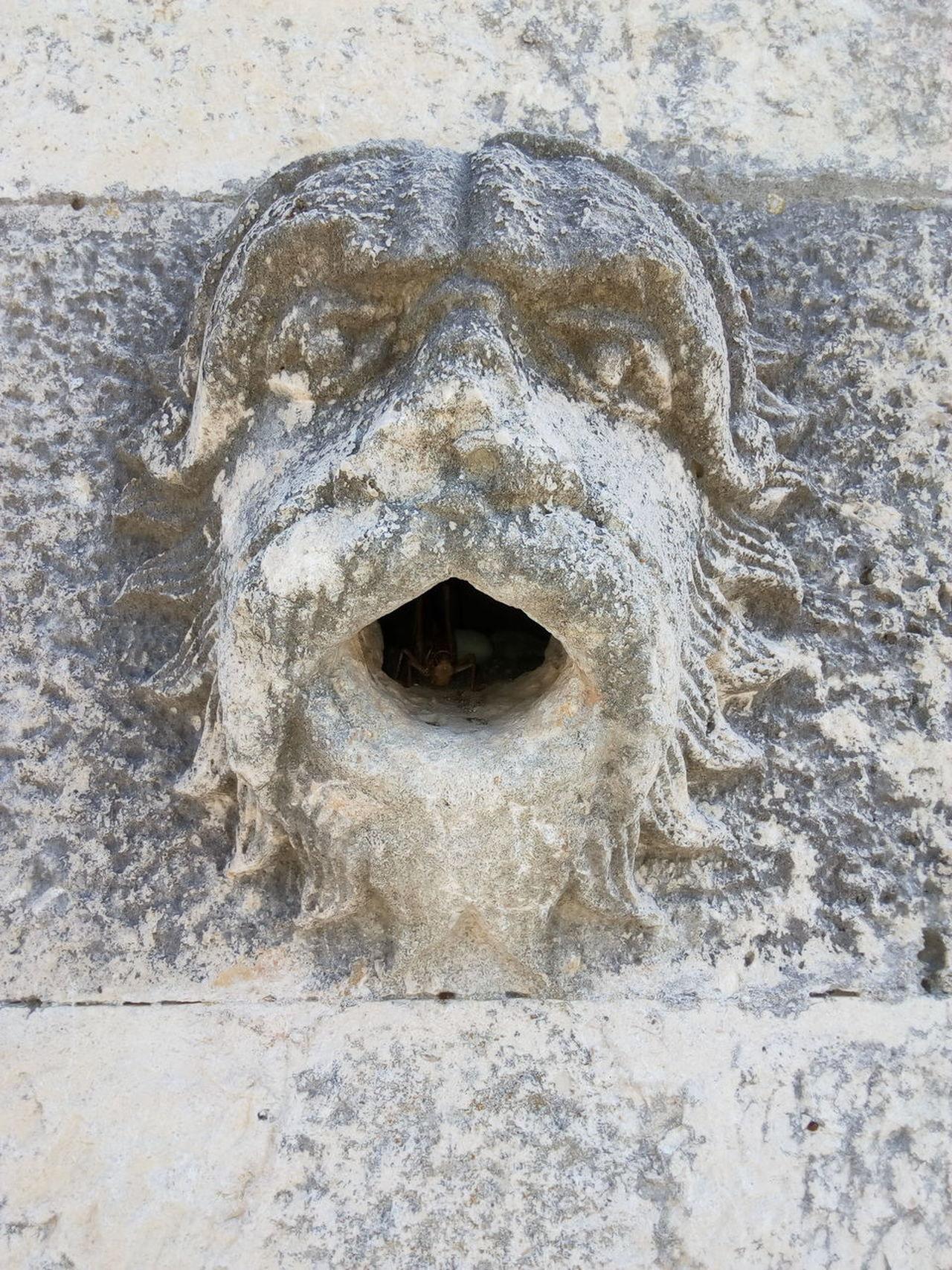 Was Siehst Du? What Do You See? StoneMauerMauerstein Animals No People Outdoors Kurioses  Mauersteine Relief Sculpture