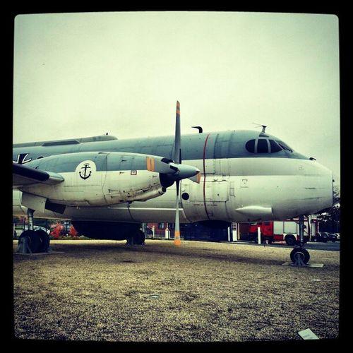 #MFG3 #Plane #Breguet #Atlantic #Nordholz Atlantic Breguet Nordholz Mfg3 Plane