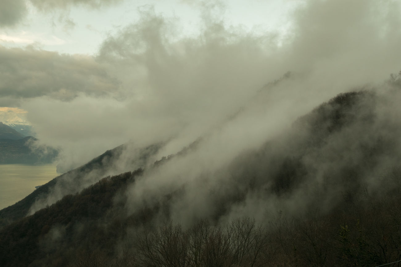 Beauty In Nature Cloud - Sky Day Fog Landscape Mountain Nature No People Outdoors Thunderstorm Tree