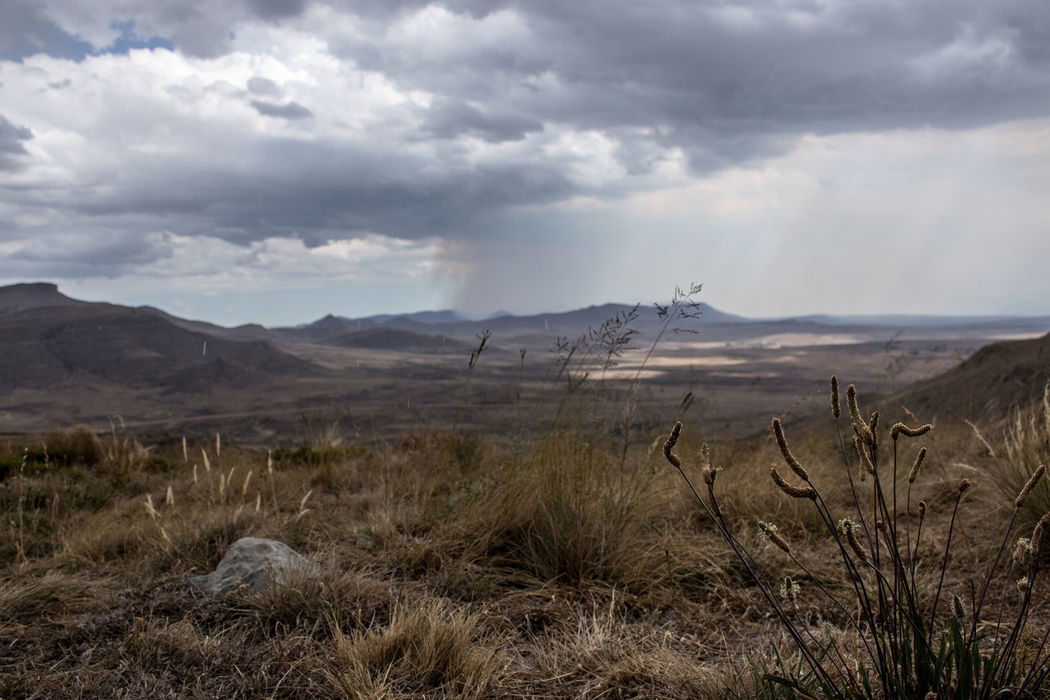 Arid Climate Cloud Cloud - Sky Cloudscape Cloudy Composition Field Geology Horizon Over Land Karoo Karooheartland Karoolife Landscape Nature Non-urban Scene Outdoors Perspective Physical Geography Remote Scenics Sky Tranquil Scene Tranquility