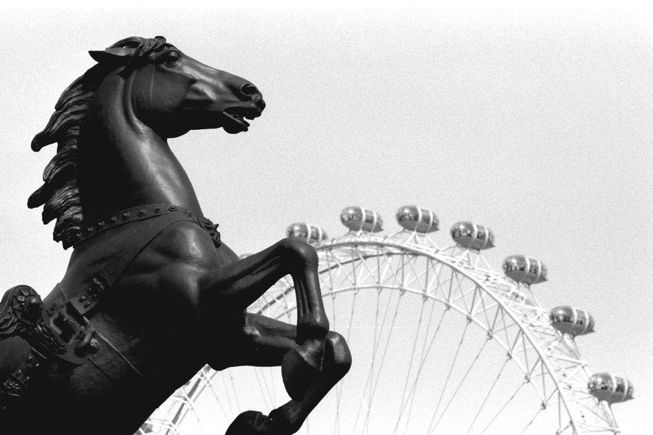 Beautiful stock photos of pferde, Amusement Park, Amusement Park Ride, Animal Representation, Art