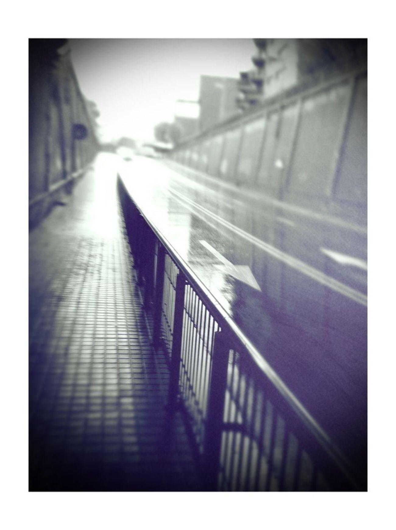 Streetphotography Rain Eye4photography  EyeEm Best Shots