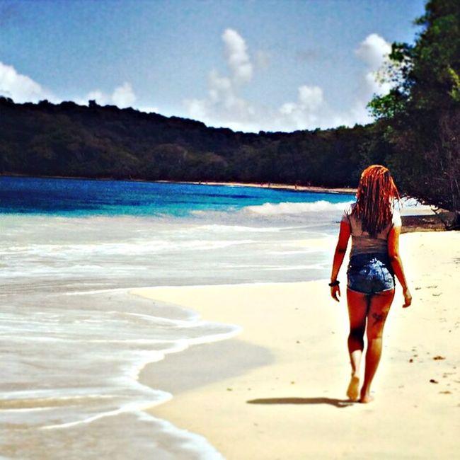 Beach Enjoying Life Island Paradise