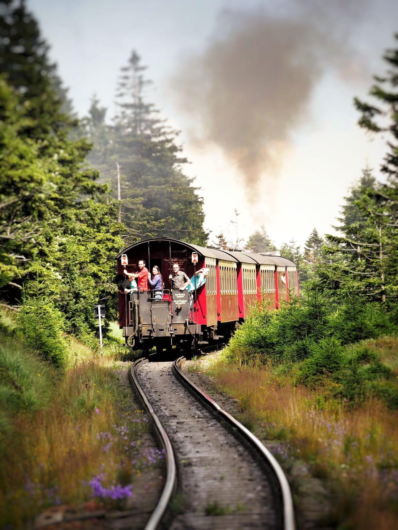 Passengers of Brockenbahn Harz Germany Passenger Tourist Tourists Brocken Steamtrain Summer Mountain Mountains Railway Railway Track Traveling Travel Showcase July Global Photographers Alliance Global Photographer Works Exhibition Steam Trains Steam Train Railroad Railroad Track