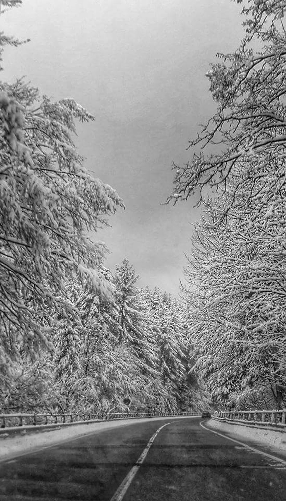 Paesaggiodasogno Calabria (Italy) Natural Simplicity Calabriadascoprire Paesaggio Invernale Paesaggio Malinconico Paesaggio Montano Natural Colors Calabriadaamare Paesaggiocalabrese Paesaggioitaliano Natural Photography