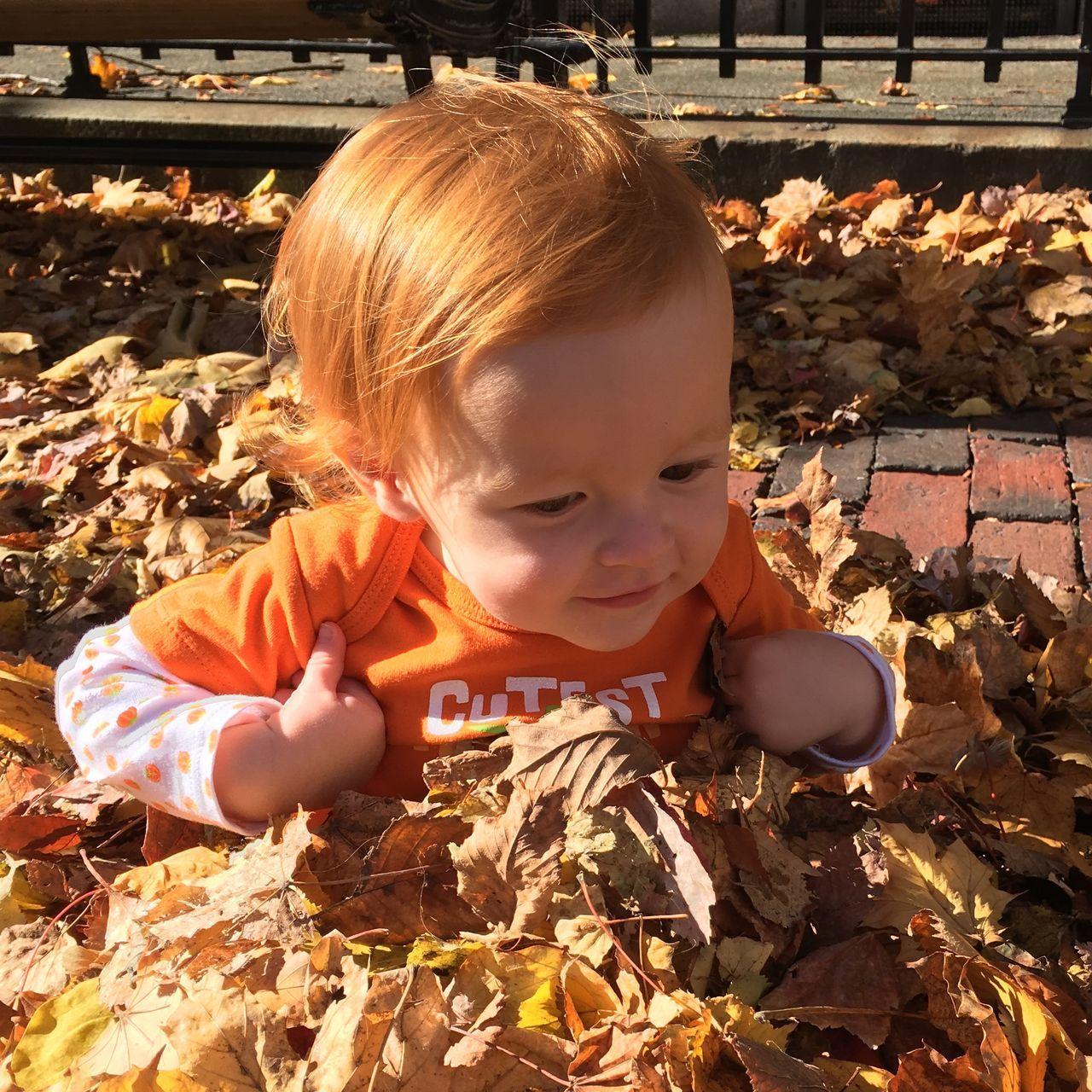 All Orange Fall Leaves Orange Redhead Baby In Leaves Leaf 🍂 Leafs Leaf Pile Baby Girl Color Pallete Color Palette