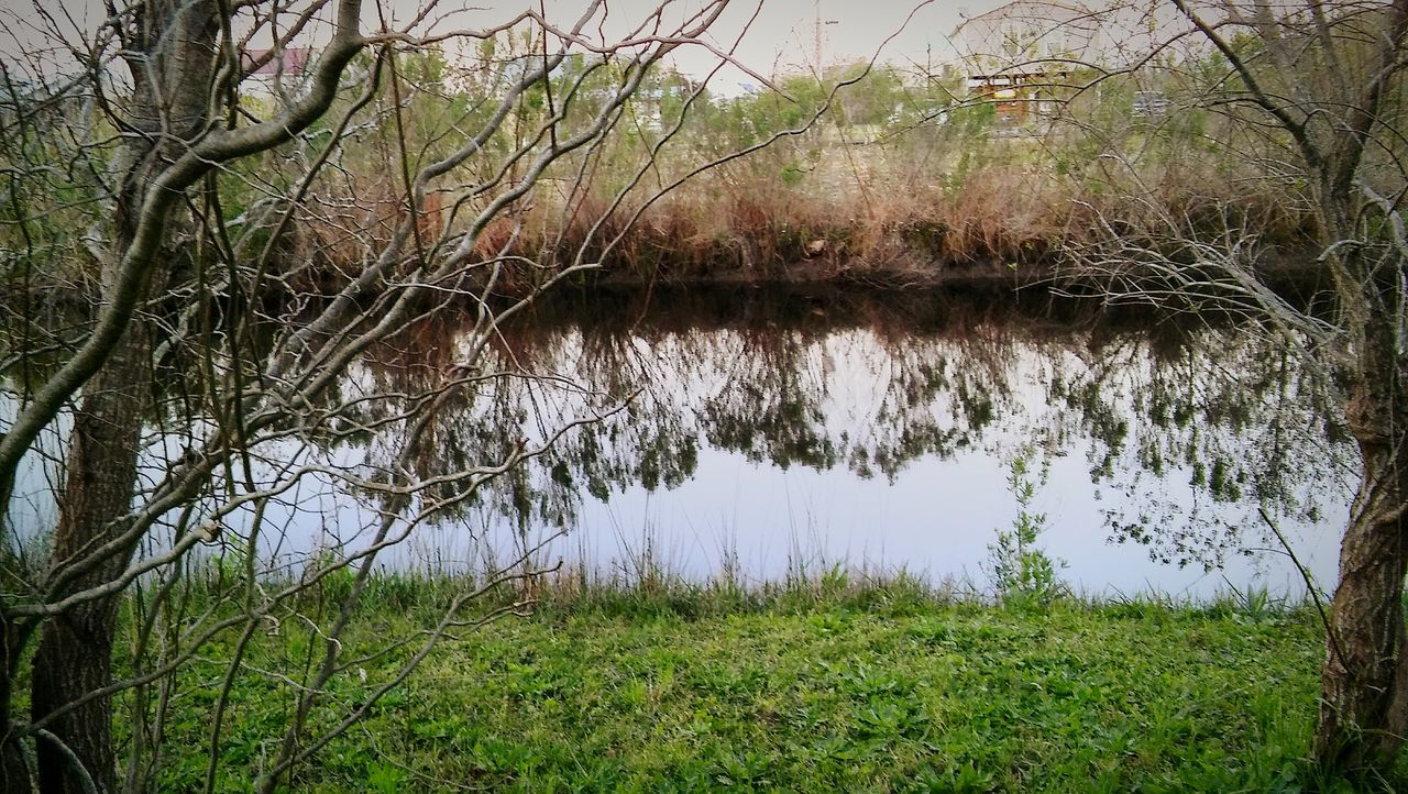 Reflections In The Water Fishinghole Grass Nature Growth Serene Outdoors Water Tree WillowTree's Color Explosion Color's Landscape Silhouette Eyeemnaturelover EyeEmBestShot's Outdoors Full Length Day Growth Peaceful And Serene Reflections On The Water Outdoorlife