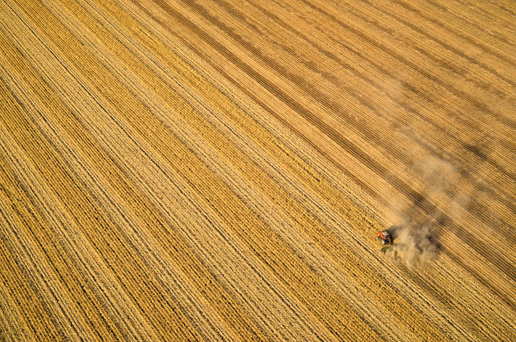North by Northwest EyeEmNewHere Farmer South Dakota Tractor Aerial Agriculture Combine Harvester Corn Crops Ethanol Farm Field Food Grain Growth Harvest High Angle View Outdoors Rural Scene Working First Eyeem Photo