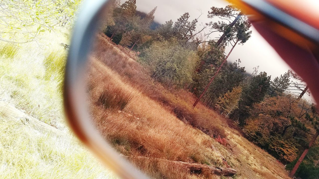 Oakleysunglasses Oakley Shades Nature EyeEmBestPics EyeEm Nature Lover Samsung Galaxy S7 Autumn Leaves Travel Destinations Lost In The Landscape OakleyGlasses Perspectives On Nature