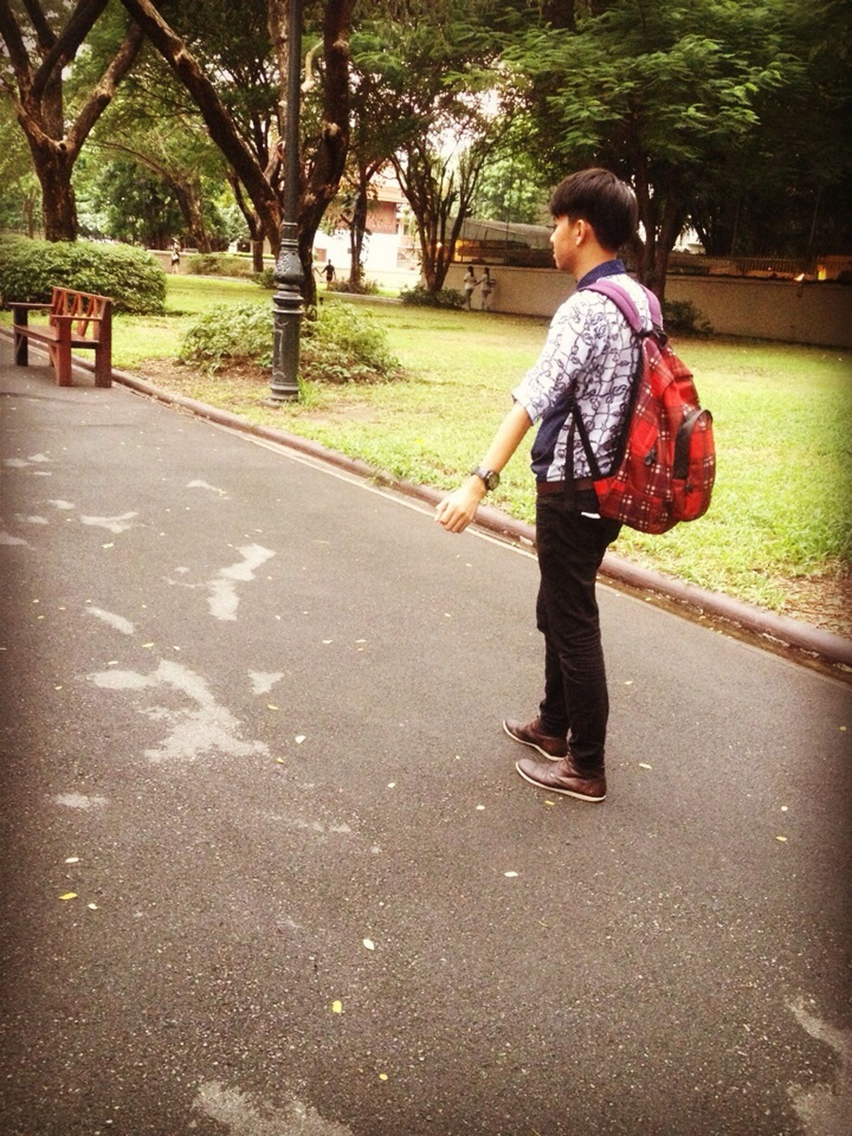 full length, childhood, casual clothing, lifestyles, elementary age, person, leisure activity, girls, boys, street, tree, road, innocence, walking, standing, park - man made space, cute, day