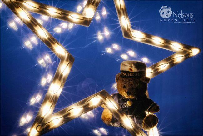 ??✨ Merry Christmas! ✨?? NelsonsAdventures Merry Christmas! Happy Holidays Teddy Taking Photos Hello World Streamzoofamily Christmas