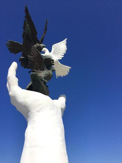 Hand&Birds Hand Birds Sky Sky_collection Statue Kuşadası I'll Shout It Out Like A Bird Set Free EyeEm Best Edits IPhoneography
