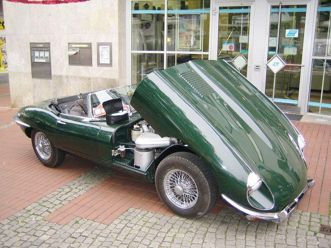 JAGUAR Oldtimer Old Car Car Classic Clasic Cars No People History Through The Lens  History Car Geschichte Sportwagen Automobile Pkw