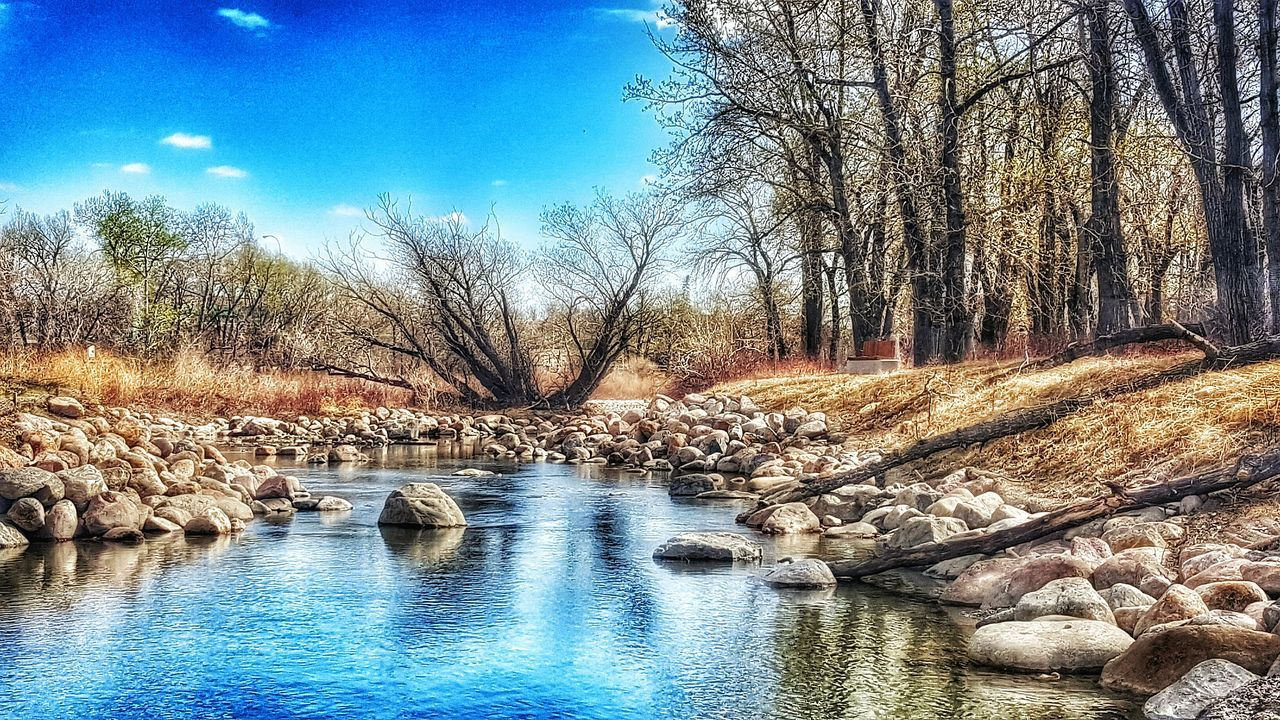 Walking Around The City  In The Sunshine Spring Springtime Reflections In The Water Spring Day Blue Sky Enjoying Life Trees And Sky Trees Reflection Rocks And Water Serenity Serene Outdoors