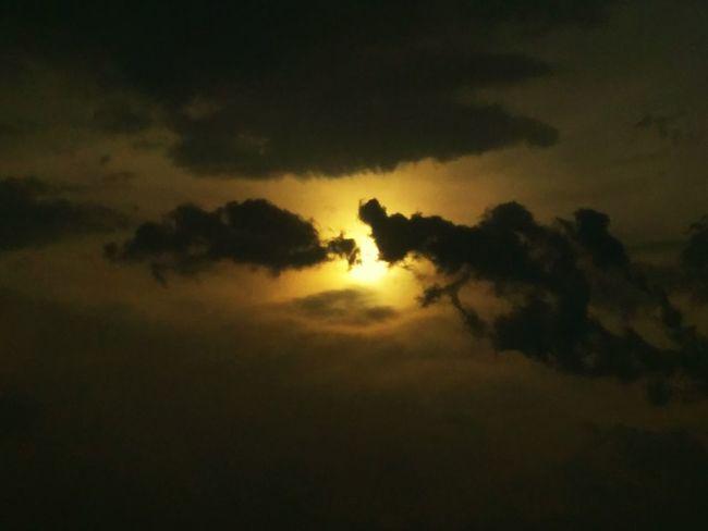 Nightshot EyeEm Nature Lover No People Happy :) Beauty In Nature EyeEm Best Shots Freshness Sky