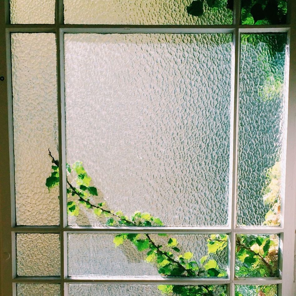 Beautiful stock photos of window, Berlin, Day, Frosted Glass, Germany