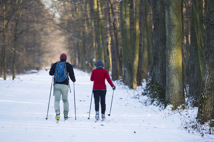 06.01.2017 The Stefan Starzyński Kabaty Woods Nature Reserve Cold Temperature Couple Cross Country Skiing Daily Life Day Forest Kabaty Nature Nature Outdoor Activity Outdoors Park People Poland Reserve Snow Starzyński Stefan Warsaw Winter WoodLand Woods