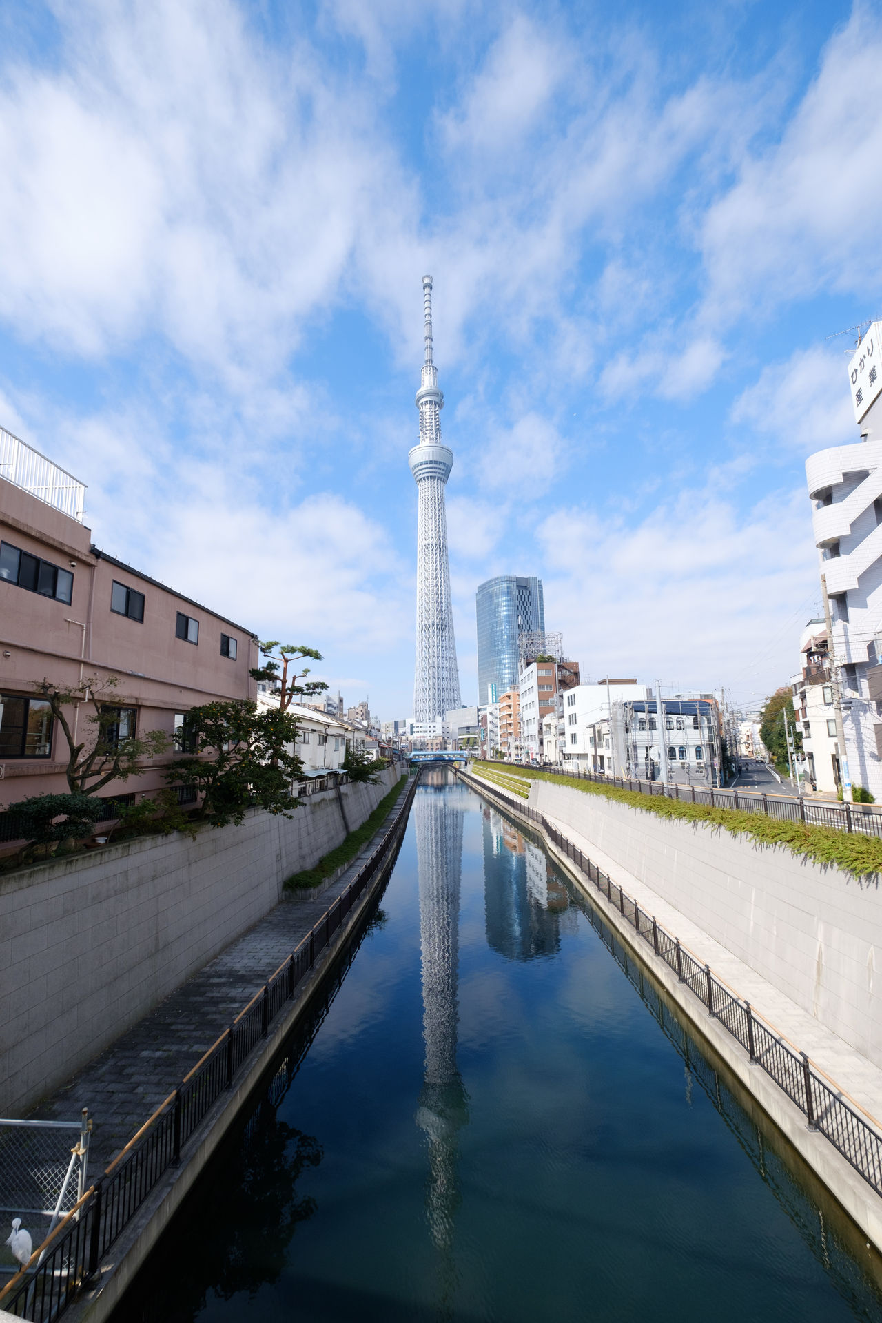 東京スカイツリー/Skytree Day Japan Japan Photography Oshiage Outdoors Sky Skytree Tokyo Tokyo Sky Tree Tower スカイツリー 押上 日本 晴空塔 東京スカイツリー