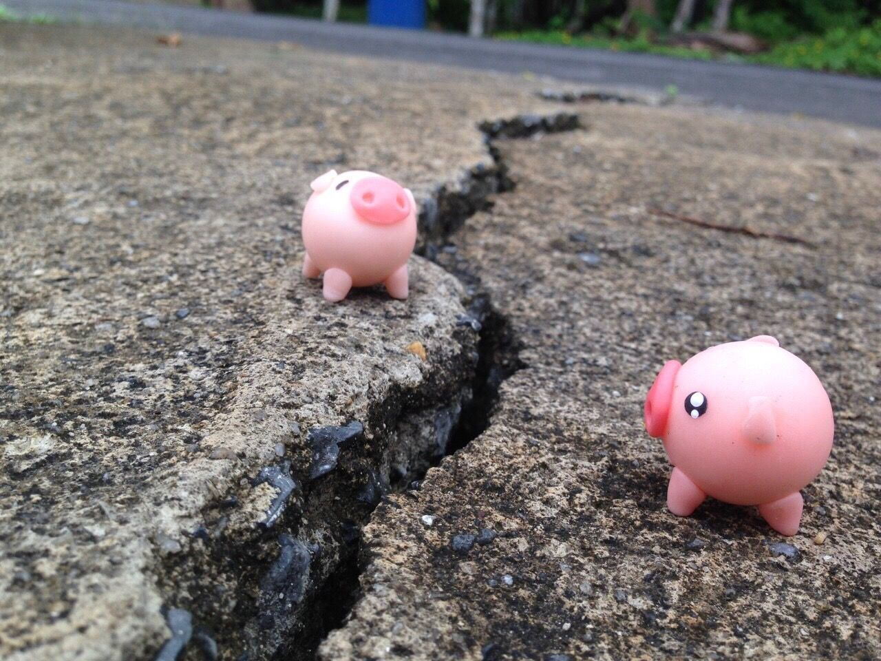 Separation Separate Earthquake Focus On Foreground No People Close-up Day Eggshell Outdoors Piggy Bank Blackground Wallpaper Broken Heart Broken Obstruction Barrier