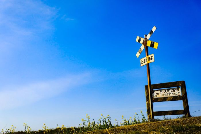Guidance Communication Blue Low Angle View Day Road Sign Text No People Outdoors Direction Sky Clear Sky Nature