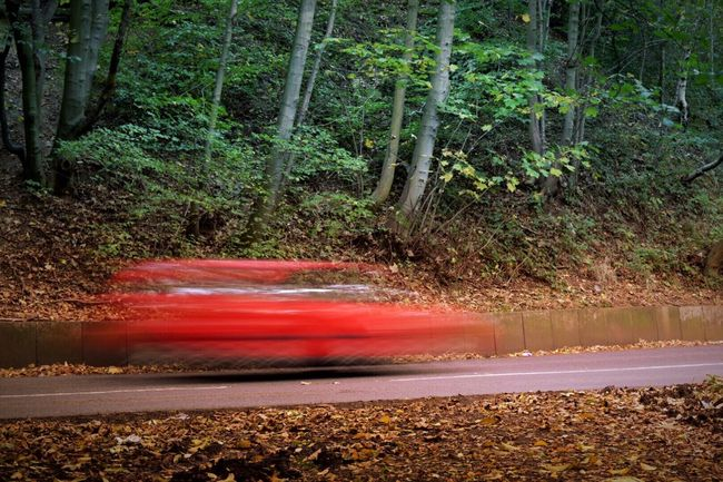 Capturing Motion Stretchy car | Tree Red Forest Green Blurred Motion Motion Outdoors Nature Exploring EyeEm Gallery Eye4photography  Taking Photos Outdoor Photography Urban Urbanphotography Road Car Driving Fast