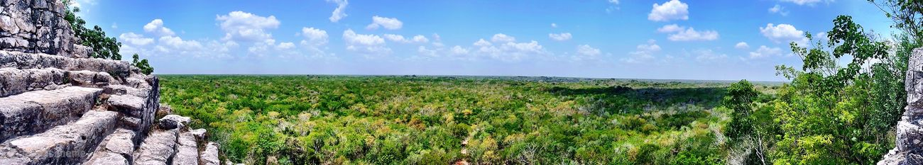 Panoramic Photography Nature Pyramid Tranquility Green Color Beauty In Nature Landscape Maya Cancun Coba Panorama