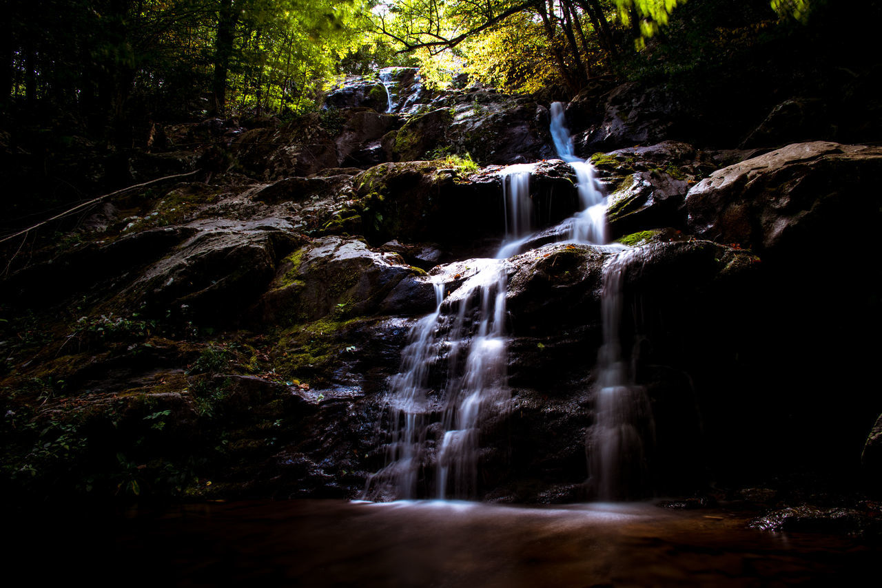 Day Flowing Water Forest Long Exposure No People Outdoors River Rock - Object Rock Formation Rocks Scenics Serene Shenandoah National Park Stream Tranquil Scene Tranquility Trees Virginia Waterfall