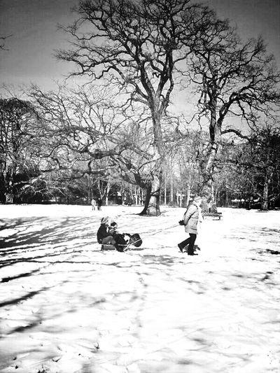 Blackandwhite Enjoying The Sun KCe Winter White By CanvasPop