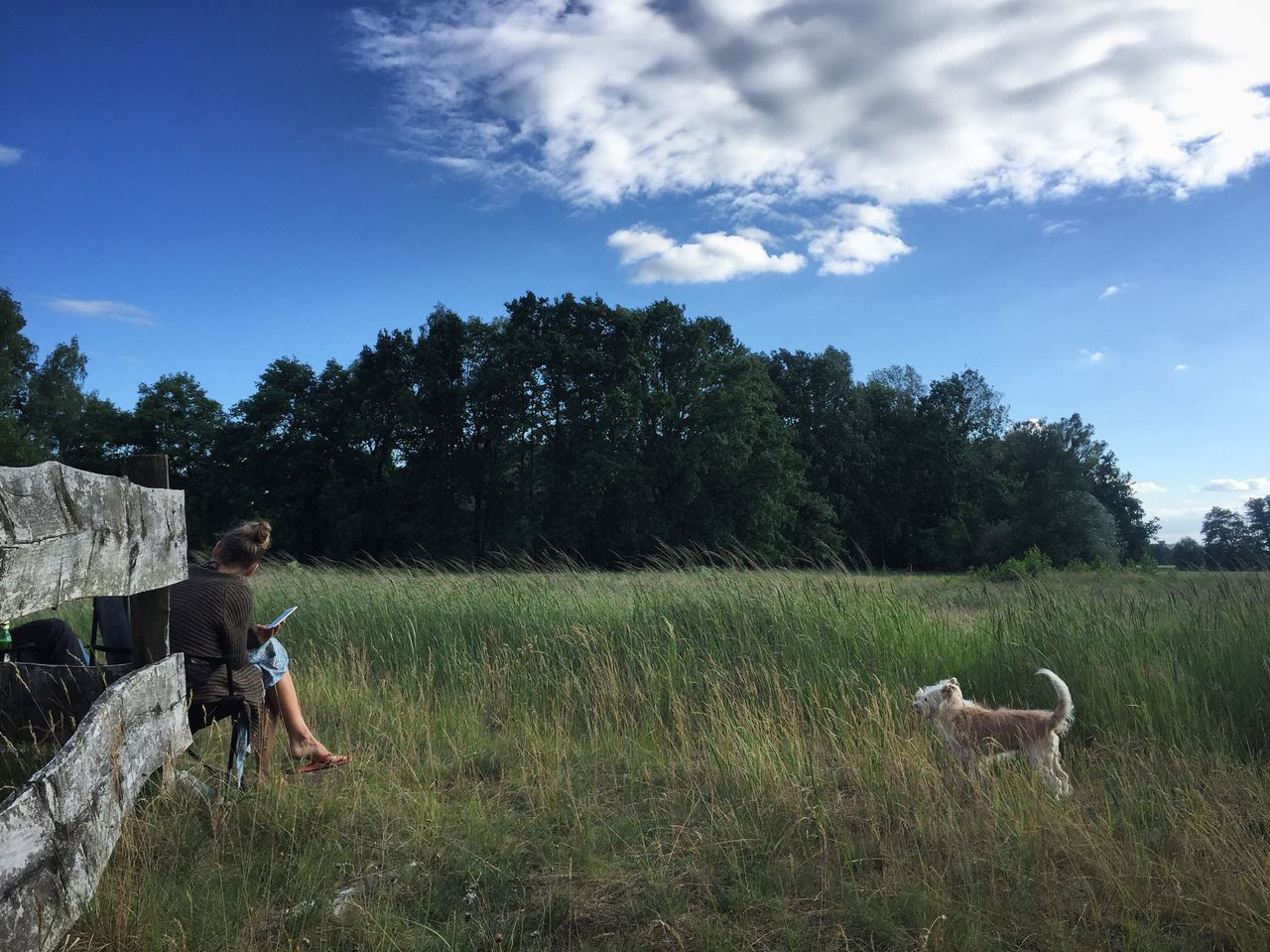 Serene evening Sky Pets Animal Themes Two People Togetherness Domestic Animals Dog Casual Clothing Day Leisure Activity Tree Real People Childhood Field Outdoors Grass Mammal Nature Cloud - Sky Boys Serenity Evening Dogs Family Brandenburg
